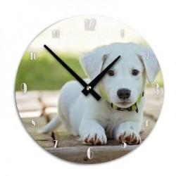 Horloge Chien